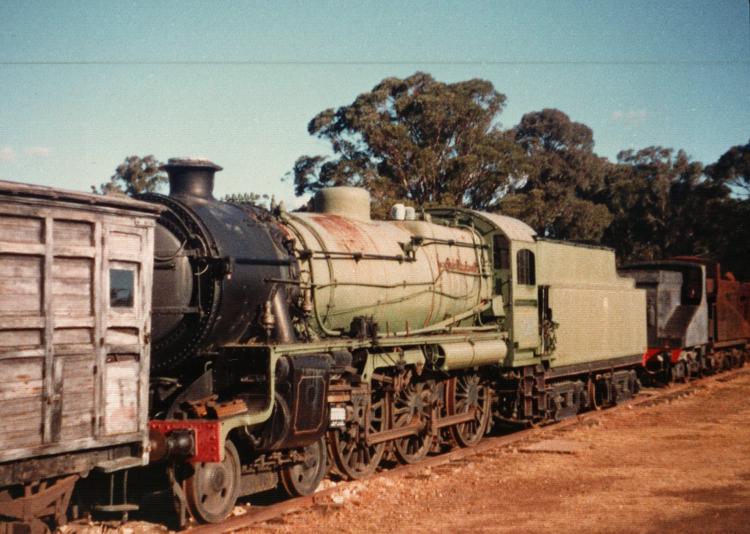 Preserved Steam Locomotives Down Under - 3609